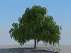 HQ Plants 1.3 - trees pack 2 - 3d model - CGStudio