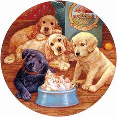 Looking for dog jigsaw puzzles? You'll find a large selection of unique dog jigsaw puzzles for sale for different breeds, sizes, shapes and number of pieces Dog Puzzles, Jigsaw Puzzles, Baby Animals, Cute Animals, Puppy Pictures, Puppy Pics, Pretty Pictures, Pretty Pics, Vintage Dog