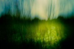 Expressionist - Su Walker            wall art  photography