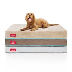Brindle Memory Foam 4-inch Orthopedic Dog Bed | Overstock.com Shopping - The Best Deals on Memory Foam Pet Beds