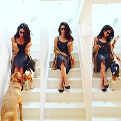 "Meghan Markle na Instagramu: ""Proudly supporting my friend @mishanonoo with the very first NYFW #instashow! Come see her SS16 collection at @mishanonoo_show including this amazing dress  (Even my pups wanted to be part of the shoot because we all love Misha! Congrats, lady! Xx)"""