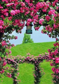 #garden Beautiful Landscape Wallpaper, Beautiful Landscapes, Beautiful Gardens, Flowers Nature, Love Flowers, Beautiful Flowers, Formal Gardens, Outdoor Gardens, Rose Arbor