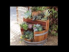 Jason Hodges: Pot plant display ideas, Ep 15 (15.05.15) - YouTube
