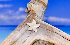Maori Flower... Perfect fory lil rachel joy christmas $24