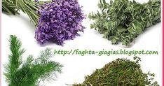 Σπιτικές, παραδοσιακές συνταγές, μαγειρικής - ζαχαροπλαστικής, της γιαγιάς. Vegetable Garden, Garden Plants, Natural Teething Remedies, Holistic Medicine, Alternative Treatments, Botany, Gardening Tips, Health And Beauty, Herbalism
