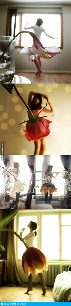 37 Ideas Beautiful Art Inspiration Photographs Awesome Creative For 2019 Photo Illusion, Creative Photography, Portrait Photography, Photography Flowers, Photography Ideas, Fashion Photography, Pretty Pictures, Cool Photos, Dress Flower