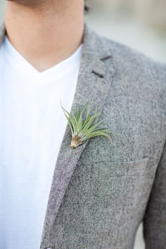 Masculine air plant boutonniere  Design, Arrangements Design  Photography, Katie McGihon  Featured on Style Me Pretty Living