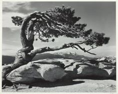 Ansel Adams my first photographic icon