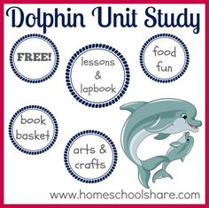 FREE Dolphin Unit Study, lapbook, and extra ideas from Homeschool Share My favorite animal! Dolphin Facts, Dolphin Tale, Preschool Themes, Science Activities, Homeschool Curriculum, Homeschooling, Book Baskets, Ocean Unit, Magic Treehouse