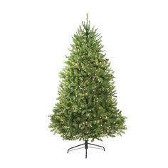 14' Pre-Lit Northern Pine Full Artificial Christmas Tree - Clear Lights
