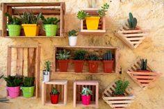 Como ter um jardim pequeno de dar inveja