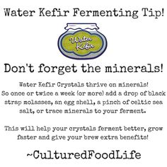 Water Kefir Fermenting Tip! Adding a drop or two of minerals (egg shell, black strap molasses, or celtic sea salt) will help your water kefir crystals grow and add more benefits to your ferment! Kefir How To Make, How To Make Water, Kefir Recipes, Raw Food Recipes, Healthy Recipes, Kefir Yogurt, Kefir Culture, Fermentation Recipes, Blood Type Diet