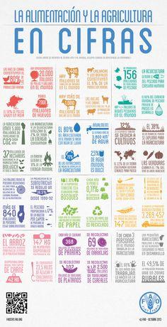 Organización de las Naciones Unidas para la Alimentación y la Agricultura:Infographics Details