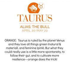 Jam-sign Taurus www.brandymartin.jamberry.net