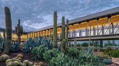 Gallery of Desert City / Garciagerman Arquitectos - 1