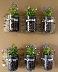 DIY Hanging Wall Planters from Mason Jars!