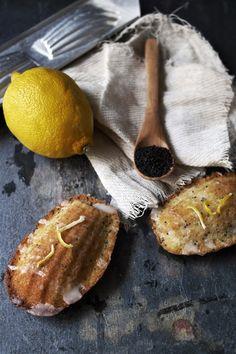 ..Twigg studios: lemon poppy seed madeleines