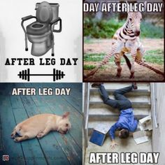 Leg-end after leg-day #fitness #humor