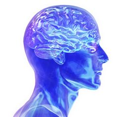 Here's another list for you to see some cool brain facts, backed by scientific studies. Colleges For Psychology, Psychology Facts, Dr Orders, Adhd Help, Anti Oxidant Foods, Brain Facts, Men Vs Women, Calories A Day, Research Studies