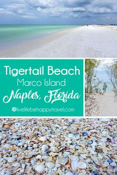 Tigertail Beach (Marco Island) Naples, Florida - where to find shells - shelling - things to do Nap Visit Florida, Florida Vacation, Florida Travel, Vacation Places, Florida Beaches, Vacation Trips, Vacation Spots, Day Trips, Travel Usa