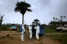 Different Ebola strain kills 13 in the Congo - second outbreak adds to fears virus may be unstoppable