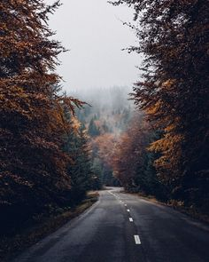 Shared by Savannah. Find images and videos about photography, nature and travel on We Heart It - the app to get lost in what you love. Beautiful World, Beautiful Places, Beautiful Roads, Landscape Photography, Nature Photography, Travel Photography, Aesthetic Photography Nature, Autumn Aesthetic, Pretty Pictures