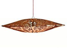 Ceiba Lamp