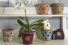 gl-kew-orchid-pot