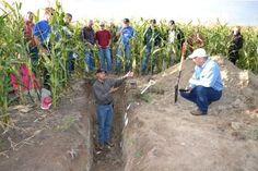 Teaming with soil microbes: Investing in soil...
