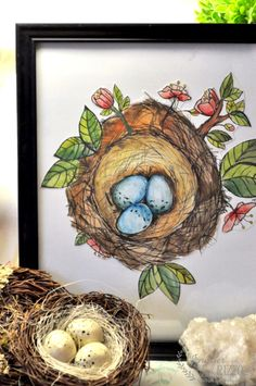 Bird Nests Coloring Pages Yahoo Image Search Results coloring