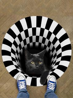 I found this amazing 3D Illusion Doormat Cat Pattern Door Floor Mat Non-slip Black White Doormat Decor Carpet with AU$9.99,and 14 days return or refund guarantee protect to us. --Newchic Porch And Balcony, Home Carpet, Make Money Now, Cat Pattern, Floor Rugs, Clothes For Sale, Illusions, Doormat, Flooring