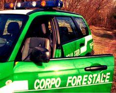 Rimborsi d'oro in Sicilia, l'Ue minaccia lo stop ai fondi http://tuttacronaca.wordpress.com/2014/01/07/rimborsi-doro-in-sicilia-lue-minaccia-lo-stop-ai-fondi/