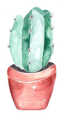 Kaktus / Greta Schwester