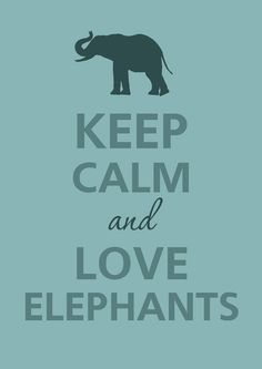 Keep calm and love elephants ... of course
