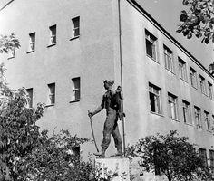 1969 körül. Törökvész úti Általános Iskola Budapest, Tarot, Tarot Cards