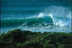 What we talk about when we talk about style: Tom Curren's beautiful lines at Jeffreys Bay in the '90s are perhaps still the most referenced example of surfing's ideal form. Photo: Gilley
