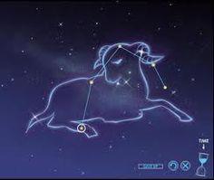 20 Best Astrolutely Zodiac images in 2014   Zodiac
