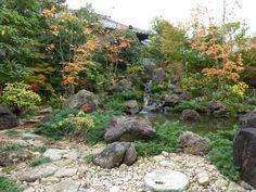 Fabrice Celestin - jardin japonais