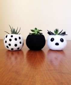Adorable, cute, small planters for succulents and cacti. Felt Succulents, Small Succulents, Succulent Pots, Potted Flowers, Flowers Garden, Toddler Boy Room Decor, Cute Office Decor, Indoor Flower Pots, Small Cactus