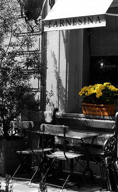 *Cafe (Touch of Color)