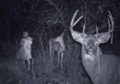 Paranormal Photo Gallery: Little Girl Ghost with Deer