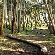 Everything you'd want to see fromSan Francisco's Presidio to southern Marin