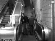 16 GIFs of People Who Are Definitely Not Using an Escalat...