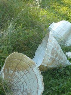 YOUNG MI KIM CERAMICS Vessels in the garden