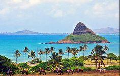 Horseback Rides, ATV's or Kayaking at Kualoa Ranch, Oahu, Hawaii. (Chinaman's Hat in background.)