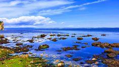 לקצה האדמה ובחזרה – מזרח קנדה, אכדיה, הרים לבנים – מסלול וסיכום טיול – על טיולים ומה שביניהם Water, Outdoor, Gripe Water, Outdoors, The Great Outdoors, Aqua