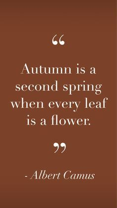 Words Quotes, Wise Words, Me Quotes, Great Quotes, Quotes To Live By, Inspirational Quotes, Autumn Inspiration, Journal Inspiration, Hello September Images