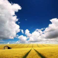 who knew Kansas was soo beautiful!?