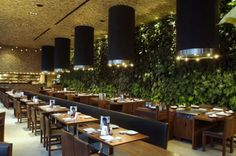 Contemporary Japonez Glass Restaurant with Natural Green Wall