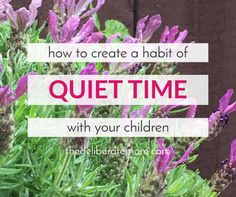 Are you weary? Do you wish you could send your children for a long afternoon nap? Here are some ideas so that you can incorporate a quiet time into your daily routine.
